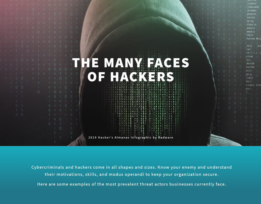 Many Faces of Hackers Infographic